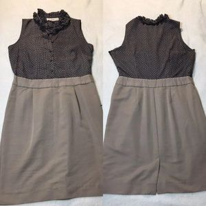Loft fitted casual knit dress size 6
